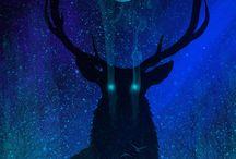Deer and Moon