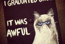 Graduation / by Katelyn Myers