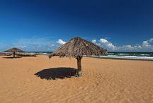 Particular Odisha (Orissa) Tour Package for pretty deep Beaches of Odisha