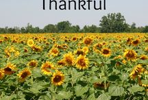 Thanksgiving & Gratitude
