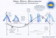Sine Wave Motion