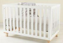 Nursery for Little Sapling / by Janery (Jane Pearson)
