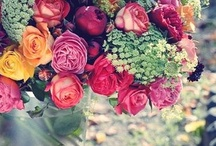 Kwiatowo - kolorowo