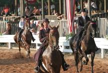 American Saddlebred Capital of the World