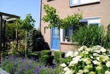 Voortuinen / Een groene tuin een mooi welkom