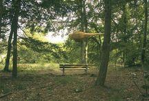 Verstild water 2006 / Natuurkunstroute in Schoonoord - Drenthe. www.natuurkunstdrenthe.nl