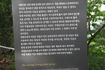 Bring It On Trail Run Information Sign6 / 부왕동여장 안내판 Bu-wang Dong-yeo-jang GPS: 37.641815  126.965660 고도(Altitude): 567m