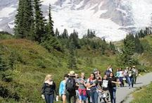 Field Trips - Volunteering - Summer Camps