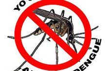 Dengue-Mal de chagas / Dengue El dengue es una enfermedad infecciosa causada por el virus del dengue,que es transmitido por mosquitos.La infección causa síntomas gripales, y en ocasiones evoluciona hasta convertirse en un cuadro potencialmente mortal, llamado dengue grave o dengue hemorrágico.  Mal de chagas La enfermedad de Chagas es una enfermedad parasitaria tropical, generalmente crónica, causada por el protozoo flagelado Trypanosoma cruzi.