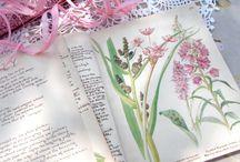 Floral Fantasy / by Karen Mack