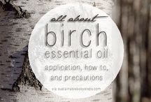 Birch / Anything and everything you need to know about Birch essential oil. Learn more on my blog @ www.thepricklypilotswife.com