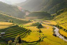 Places to go - La Pan Tan
