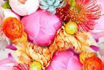 C's wedding colour theme ideas