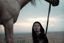 horse walk
