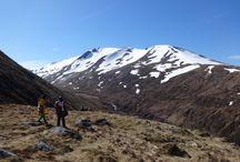 Scotland 2014 / Holiday