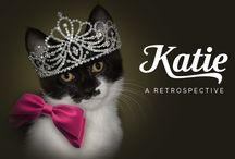 Katie the Tuxedo Cat / Katie the tuxedo cat from the award-winning cat blog, GLOGIRLY.com.