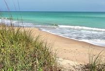 Florida.... Where I live / by Hillary Kelly