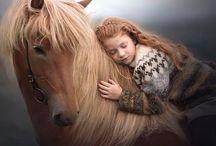 paard en connectie