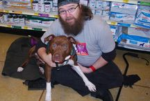 Roseville Adoption Events / by Last Day Dog Rescue