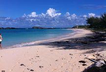 Viaggio alle Bermuda