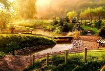 Kouzlo zahrad