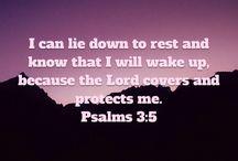 Bibelsitater / Gud, du hadde en plan, da du skapte meg. Hjelp meg å finne din vei....