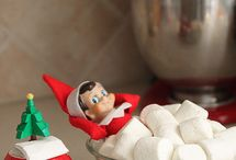 Christmas and Elf Ideas / by Amy Cook