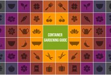 Container Gardening Guide / Download FREE Container Gardening Guide!