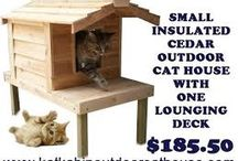 cathouse insulated