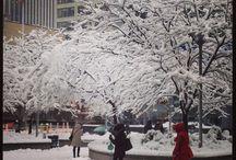 Winter ❄️⛄️ / Winter - seasonal pictures
