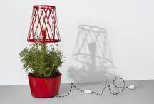Indoor Herb Garden / by Renee Hawk