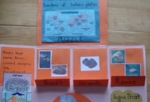 School - Social Sciences / History, Geographic, Physics... for Primary students