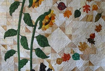 Summer Quilts / by Carole H
