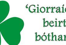 Irish Words of Wisdom!