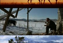 Landscape Cinematography