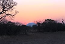 Sunrise & Sunset Pics / Incredible captures from our #RhinoSummit2014