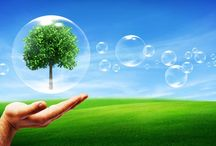 Medio Ambiente / Imágenes sobre medio ambiente, naturaleza y reciclaje.