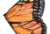 Caterpillar to Butterfly ideas / by Lisa Stein