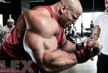 Body - Routines - Biceps / Various biceps routines