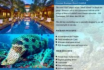 Special Offers / All about special offer packages for accommodation and activities in Bali and Lombok
