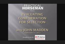 Webinars & Audio / Practical Horseman webinars from top equine experts.