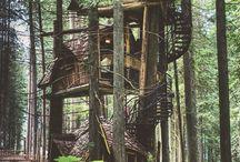 Домик на дереве / Что-то атмосферное, или красивое, интересное или просто попавшее в настроение :)