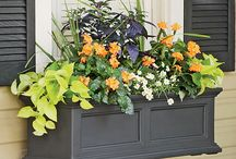 Window Boxes / Add a pop of color to your new Anlin Windows! Check out our pins of great window box finds! And to get started with your brand new Anlin Windows visit our website at www.anlin.com.