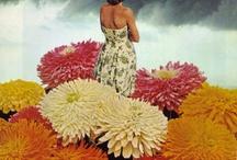 Flora collage