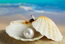 Feminine Pearls. / by Iridonousa