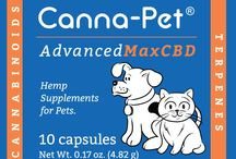 Canna-Pet® / The Canna-Pet.com Affiliate Program is available through Shareasale. Earn commissions on referred sales through your website or blog. / by Snow Consulting