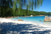 Seychelles / Travel tips and posts about these gorgeous islands in the Indian Ocean.