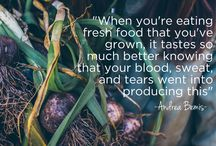 Farm Fresh Inspiration / Farm fresh inspirational quotes from episodes of the Living Homegrown Podcast.