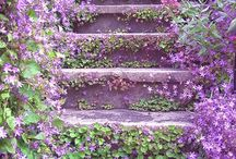 LOVE~staircases / by Rebecca FALL Rader