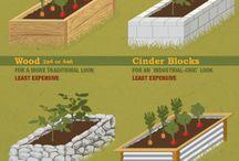 Raised gardening.